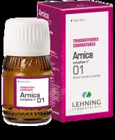 Lehning Arnica Complexe N° 1 Solution Buvable En Gouttes Fl/30ml à MONTEUX