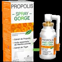 3 CHENES PROPOLIS Spray gorge Fl/25ml à MONTEUX