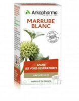 Arkogélules Marrube Blanc Gélules Fl/45 à MONTEUX