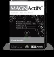 Synactifs Magnactifs Gélules B/60 à MONTEUX