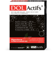 Synactifs Dolactifs Gélules duocaps B/15 à MONTEUX