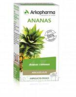 Arkogélules Ananas Gélules Fl/45 à MONTEUX