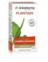 Arkogélules Plantain Gélules Fl/45 à MONTEUX