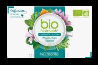 Nutrisanté Infusions Bio Tisane Confort de la gorge 20 Sachets à MONTEUX