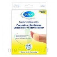 Scholl Coussin plantaire douleurs métatarsales T2 à MONTEUX