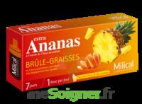 MILICAL ANANAS BRULEUR DE GRAISSE à MONTEUX