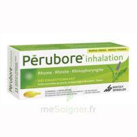 Perubore Caps Inhalation Par Vapeur Inhalation Plq/15 à MONTEUX