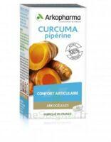 Arkogelules Curcuma Pipérine Gélules Fl/45 à MONTEUX