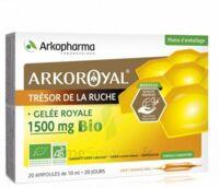 Arkoroyal Gelée Royale Bio 1500 Mg Solution Buvable 20 Ampoules/10ml à MONTEUX