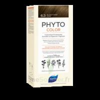 Phytocolor Kit coloration permanente 6.3 Blond foncé doré à MONTEUX