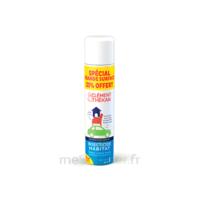 Clément Thékan Solution insecticide habitat Spray Fogger/300ml à MONTEUX