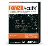 Synactifs Dynactifs Gélules B/30 à MONTEUX