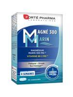 Magné 300 Marin (2 mois) à MONTEUX