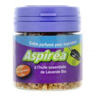 Aspiréa Grain pour aspirateur Lavande Huile essentielle Bio 60g à MONTEUX