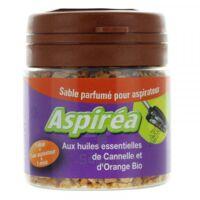 Aspiréa Grain pour aspirateur Cannelle Orange Huile essentielle Bio 60g à MONTEUX