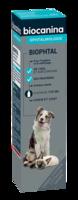 Biophtal Solution externe 125ml à MONTEUX
