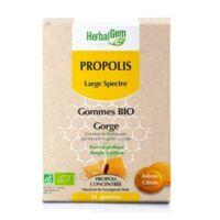 Herbalgem Propolis large spectre Gomme bio B/24 à MONTEUX
