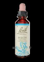 Fleurs De Bach® Original Beech - 20 Ml à MONTEUX