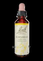 Fleurs De Bach® Original Hornbeam - 20 Ml à MONTEUX