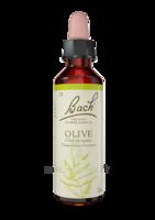 Fleurs De Bach® Original Olive - 20 Ml à MONTEUX