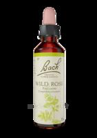 Fleurs de Bach® Original Wild Rose - 20 ml à MONTEUX